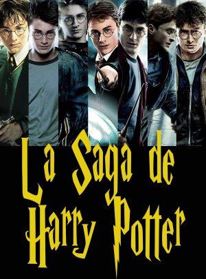 La Saga Harry Potter arriba a Sitges